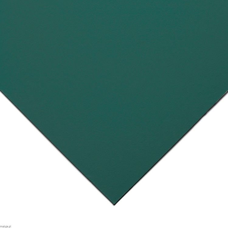 Clairefontaine Pastelmat 50x70cm Dark green 360g - papier do pasteli