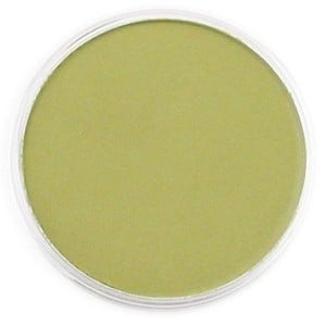PanPastel Bright Yellow Green Shade 9ml