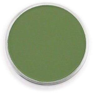 PanPastel Chromium Oxide Green Shade 9ml