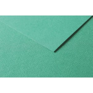 Clairefontaine Tulipe A4 160g Dark green - karton craft
