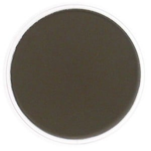 PanPastel Raw Umber Shade 9ml